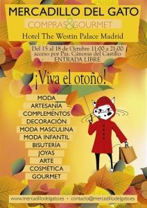 CARTEL MDG OCTUBRE 2015 MADRID
